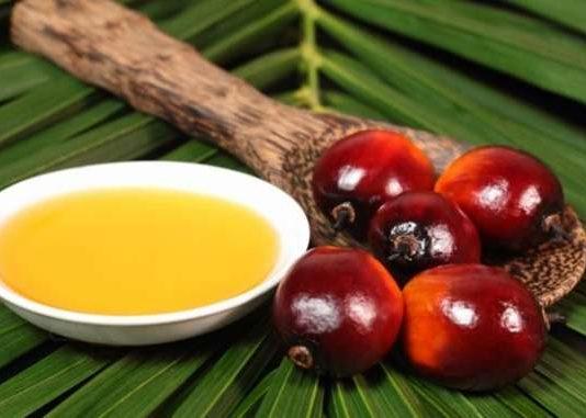 metástasis y aceite de palma